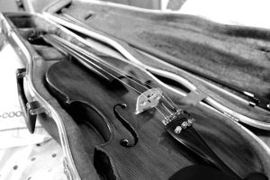 Brb gonna go learn how to play the violin. by simplesimpler