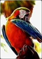 Fractal Parrot by debby-saurus