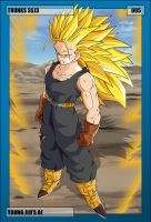 005 - Trunks SSJ3 by NeoZackNeji