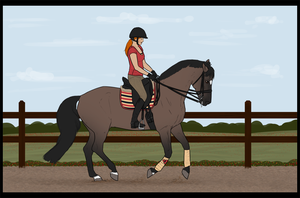Grumpy dressage by Rosenhill