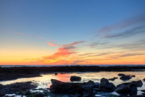 Sunset, Fitzgerald Marine Preserve by FeralWhippet