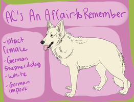 AC- An Affair to Remember by AntlerCreek