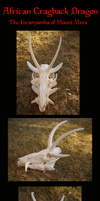 African Cragback Dragon Skull by Zhon