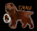 Grau by Evoluni