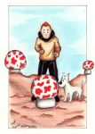 Tintin: The Falling Star by PeaceMakerSama