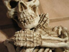 Skull 07. by Lucy-Eth-Stock