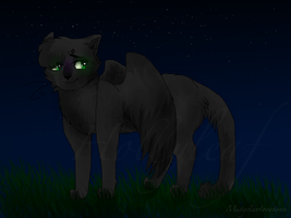 Hollyleaf by SimplyMisty