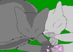 Greystripe and Silverstream by MagicTheWhiteWolf