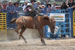 Taupo Rodeo 128 by Sooty-Bunnie