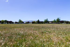 Playing Fields by ARC-Photographic