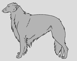 Dog Template - Borzoi by NaruFreak123-Bases