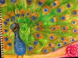 colorful peacock by PonyboyRocksMySocks