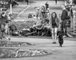 Dog In Skatepark by Klikiti-Klik