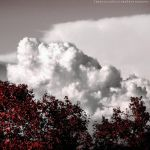 Panna of clouds 2 by FrancescaDelfino
