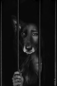 Caged by MKAphotography