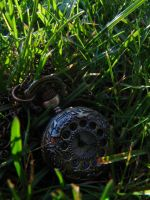 365.001: Ticking in the Grass by linderel