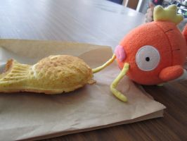 Magikarpette and his friend Taiyaki :3 by Magikarpette
