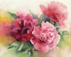 Bouquet of peonies by OlgaSternik