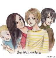 The Marauders by Furipon
