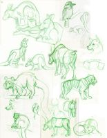 Zoo 9-16-13 by Ifus