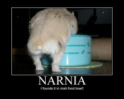 Motivational: Narnia Hamster by easolinas