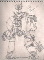 Space Marine Chaplain by LostHelix119