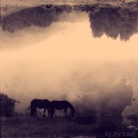 horses on the two worlds by trash-letal