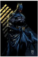 Batman by David Finch_abr XGX by knytcrawlr