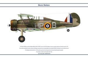 Gladiator 247 Sqn by WS-Clave