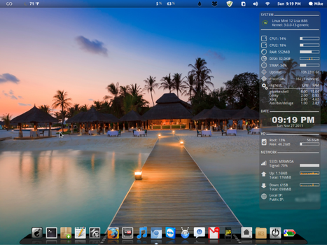 Mint 12 desktop by tungudeep