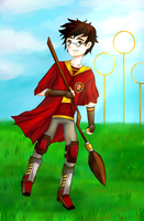 James Potter by supertay