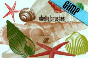 GIMP: Shells by hawksmont
