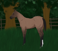 RMS Nighttime Gambler OLD REF by theRyanna