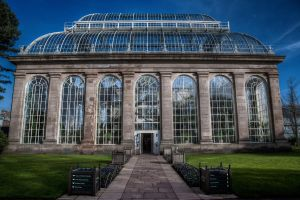 The Glasshouse by BadAlki