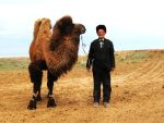 a Kazakh Man and His Camel by inukoga1