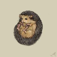 cute hedgehog by Serpina-s