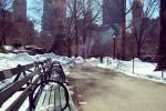 central park 2 by charlottezima
