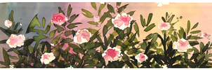 a section of flowers by nanuki