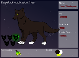Eaglepack Application - Snow by VerticalSpyder