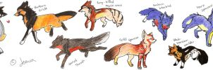 Foxes by Joava