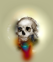 skull ART 2564 - life out of death by oboudiart
