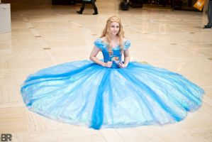Cinderella Preview 2 by ChelzorTheDestroyer