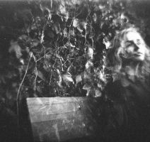 Diana F+ Portrait Leaves by newjuventud