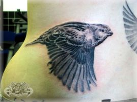 Sparrow 2 by state-of-art-tattoo