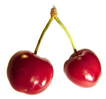 Cherry 1 by mt-stock