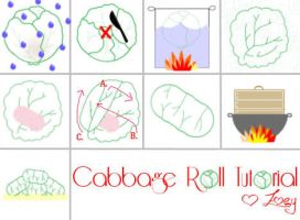 Cabbage Roll Picture Tutorial by Zuaj