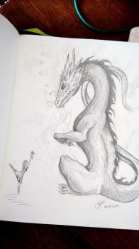 the lady and the dragon by Menfia
