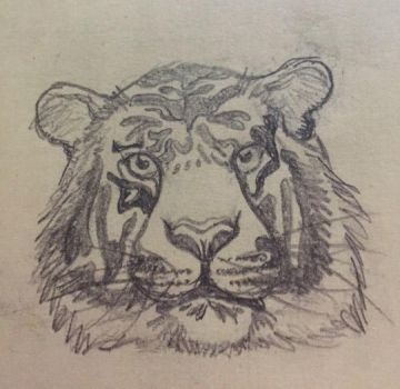 Tiger by malefic3nt