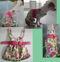 Floral green and pink doggy harness dress by Plushypuppystudio