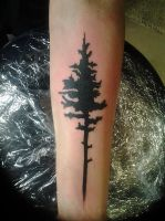 Pine tattoo by genotas
